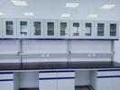 廣東實驗室通風柜鋼木通風柜鋼木實驗臺(實驗室基箱專用)