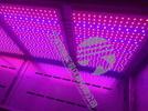 寧波科晟LED紅藍光植物生長箱RHL-110-1