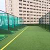 学校幼儿园人工草坪