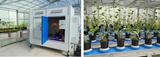 植物表型組學研究技術線上研討會
