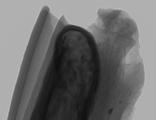 液态金属靶阳极X射线源开启X射线表征新时代