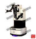 TC-Cgbot双臂机器人科教平台