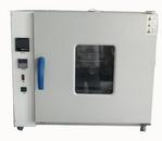 亚欧  电器绝缘油腐蚀性硫测定仪 电器绝缘油腐蚀性 DP-0804