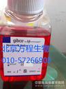 GIBCO16141-061适用于胚胎干细胞的胎牛血清