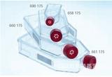 德国Greiner滤盖细胞培养瓶 658175