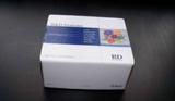 大鼠磷脂酰肌醇抗体IgG/IgM(PI Ab-IgG/IgM)ELISA试剂盒