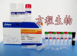 大鼠β-TG ELISA测定试剂盒