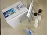 胸腺非依赖性抗原ELISA试剂盒厂家代测,进口人(TI-Ag)ELISA Kit说明书