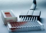 DHEA-S试剂盒,人脱氢表雄酮硫酸酯ELISA试剂盒