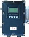 在线式防爆高纯氧分析仪 氧气纯度检测仪