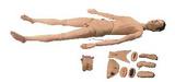 美国KETT人体半身心肺复苏模型(男性)