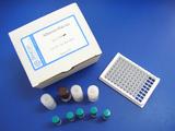 氟苯尼考检测试剂盒