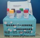 大鼠醛固酮(ALD)ELISA Kit