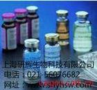 大鼠血管生成素-2(ANG-2) ELISA Kit