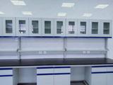 广东实验室通风柜钢木通风柜钢木实验台(实验室基箱专用)