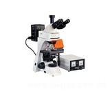 TD-L3001A荧光显微镜