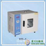 电热鼓风干燥箱(不锈钢内胆AB型)101-1