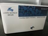 大鼠血管内皮生长因子(VEGF)价格_蓝图生物厂家优惠价