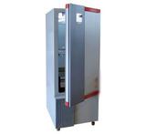 霉菌培养箱(可控湿度升级型)BMJ-160C
