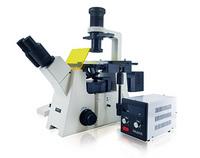 明美倒置荧光显微镜MF53-N