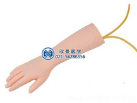 標準靜脈輸液手部模型,靜脈輸液模型