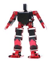 教學普及型人形機器人,DIY擴展