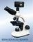 三目显微镜