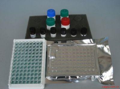人TRAb,抗促甲状腺素受体抗体Elisa试剂盒