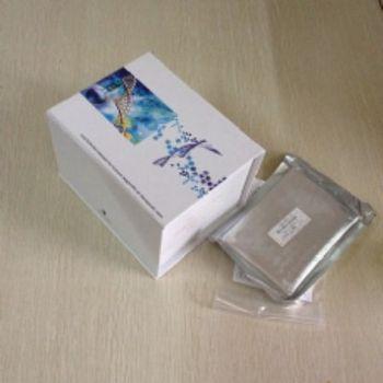 人白介素16(IL-16)ELISA试剂盒