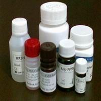 9000-89-9,L-氨基酸氧化酶/L-AAO