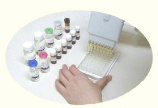 大鼠可溶性CD40配体(sCD40L)ELISA试剂盒
