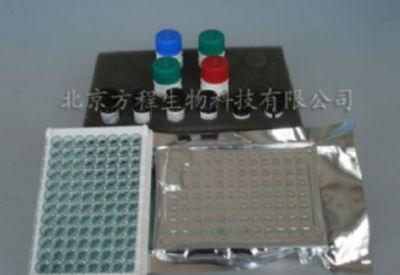 大鼠钙调磷酸酶(CaN)酶联免疫ELISA试剂盒