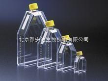 透气盖细胞培养瓶Corning25CM2