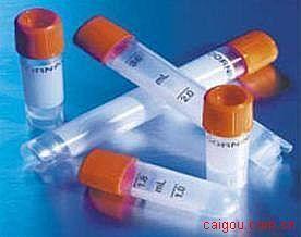 重组膜粘连蛋白-5(人)