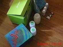 大鼠细胞色素P450(CYP450)ELISA试剂盒