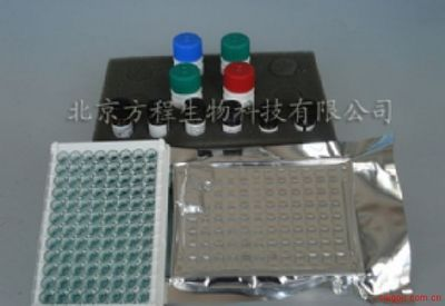 北京酶免分析代测兔乙酰胆碱(ACh)ELISA Kit价格