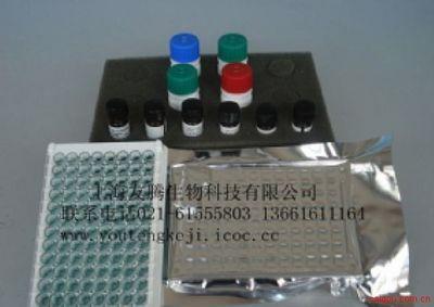 前列腺特异性抗原(PSA)ELISA试剂盒