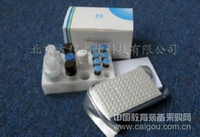 ELISA试剂盒现货供应大鼠β-EPR ELISA Kit检测价格