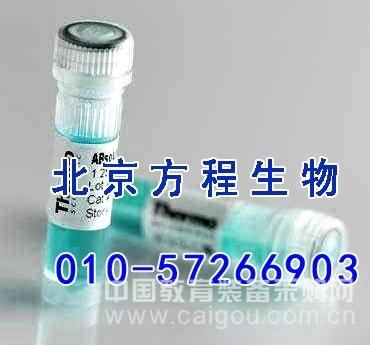 人组织因子(TF)检测/(ELISA)kit试剂盒/免费检测