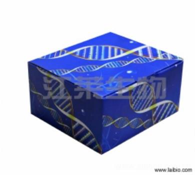 人血管内皮细胞生长因子受体3(VEGFR-3)ELISA试剂盒