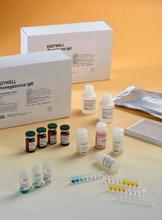 猴(LMA)ELISA试剂盒,猴抗肝细胞膜抗体ELISA检测试剂盒