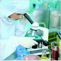 进口标准品2-脱氧鸟苷 -15N5