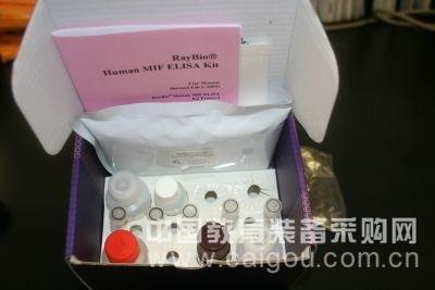 人苗条素受体(LR/Ob-R)ELISA试剂盒