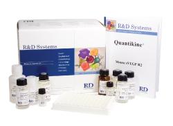 人半乳糖6硫酸酯酶(Gal-6S)ELISA试剂盒