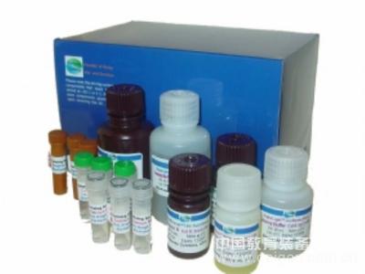 人EPI试剂盒,EPI ELISA KIT,人肾上腺素试剂盒