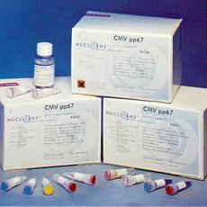 人胸腺白血病抗原(TLa)ELISA试剂盒