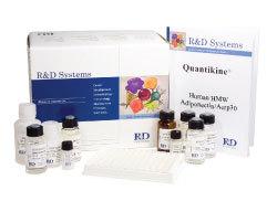 ADM试剂盒,人肾上腺髓质素ELISA试剂盒价格