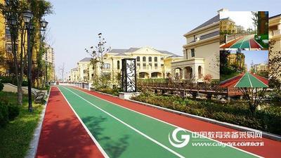 健身步道 橡胶跑道 塑胶运动卷材 预制型运动地板 广州同欣厂家
