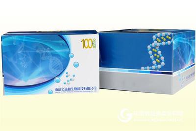 人鳞状上皮细胞癌抗原2ELISA试剂盒