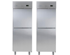 双门立式冷冻柜RS06FX2H